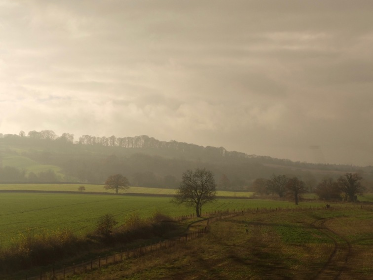 From the train 11