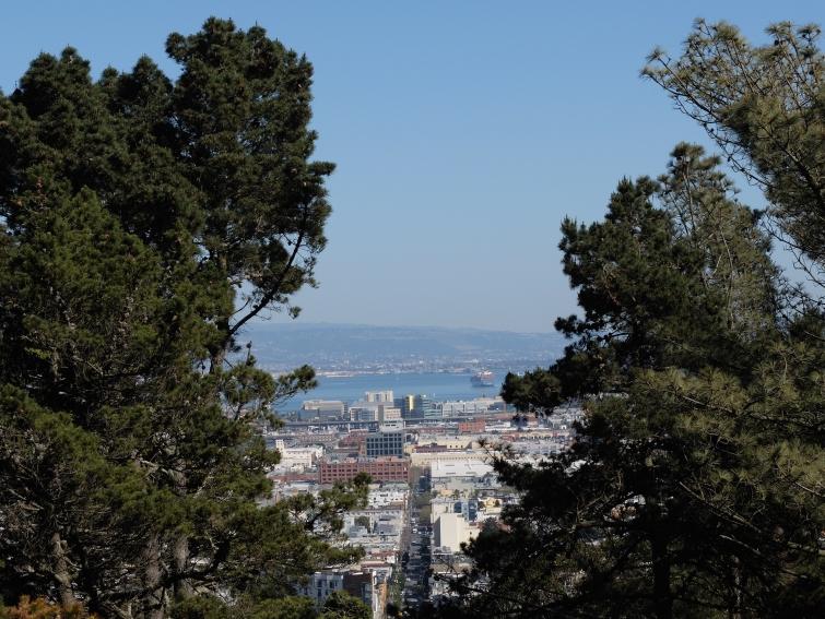 Corona Heights view street bay