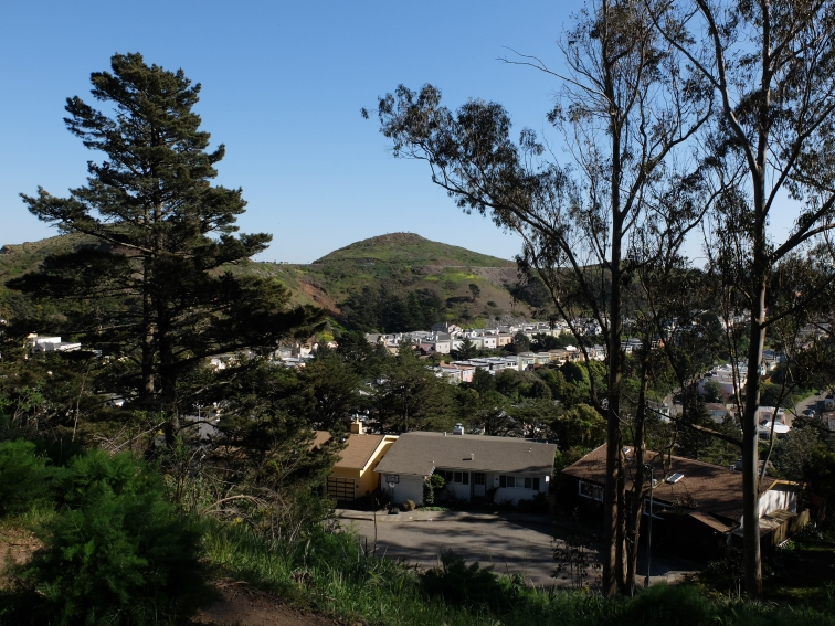 Twin Peaks and houses