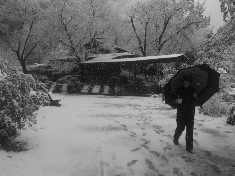 Snowy day Steph