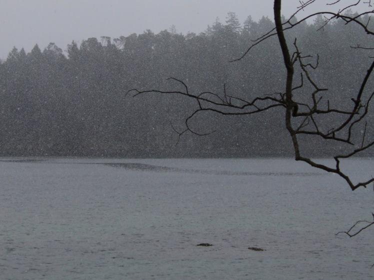 degnen-bay-snowfall-1