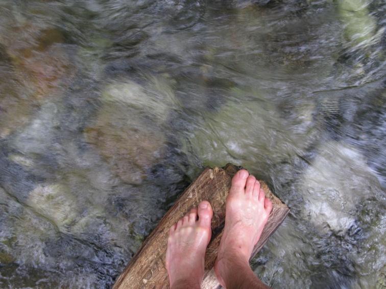 foot-array-second-crossing-log