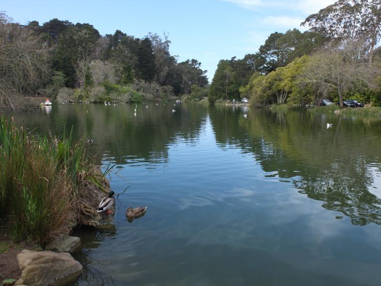 Stow Lake .jpg