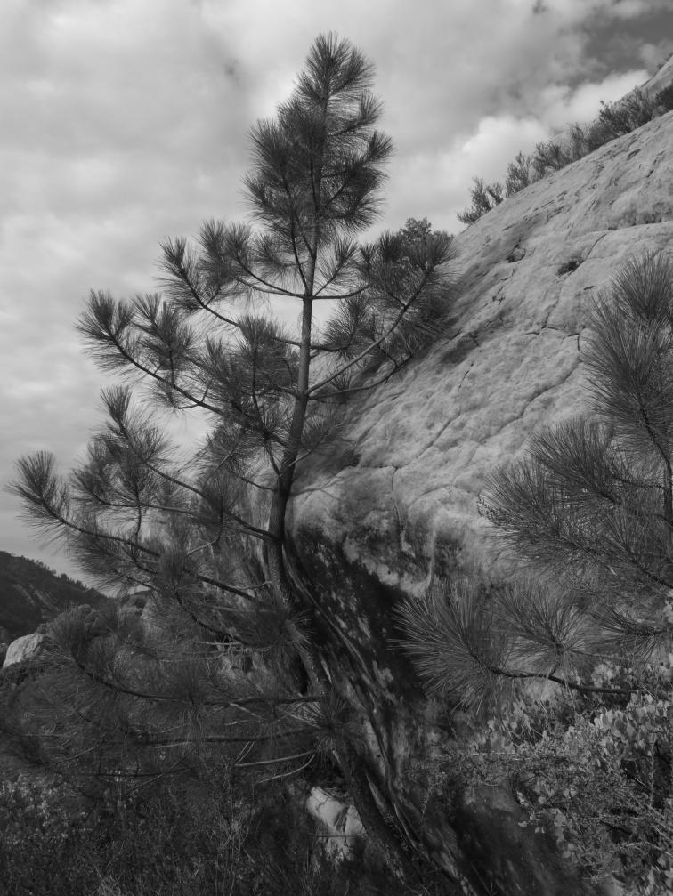 Wind Caves 8.jpg