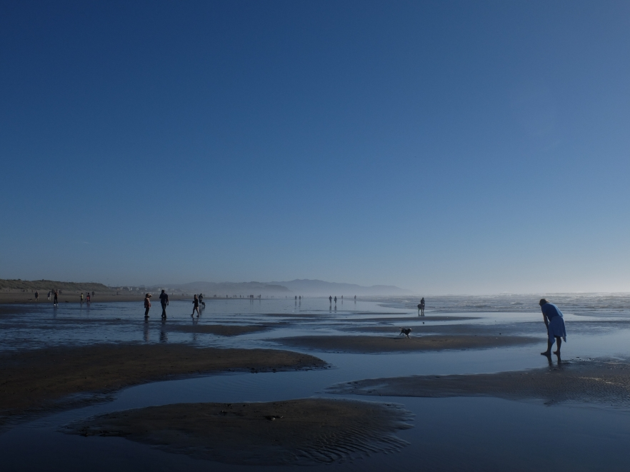 Ocean Beach January that time