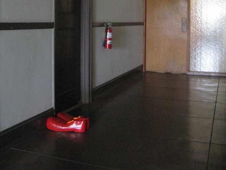 Clown shoes in the hallway.jpg